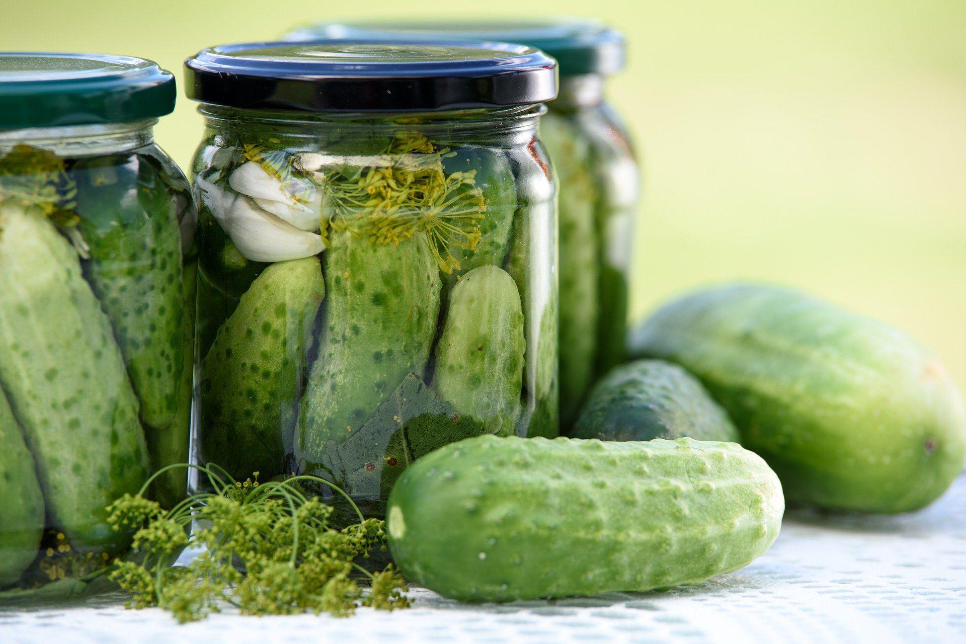Vložena zelenjava je odličen vir probiotikov.